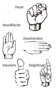 all about finger and hands