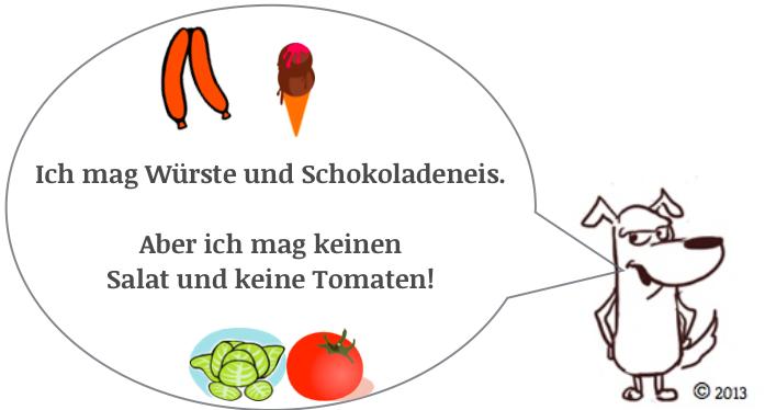 German modal verb to like-mögen