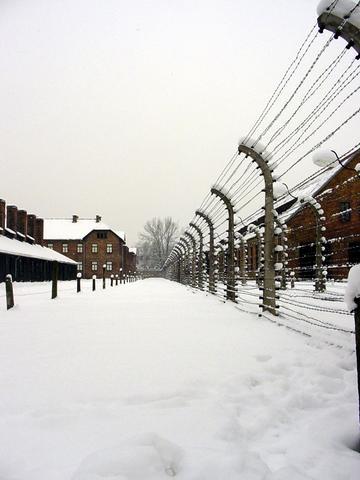 Auschwitz: The Nazi Final Solution - Top Documentary Films